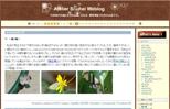 Atelier Shuhei Weblog