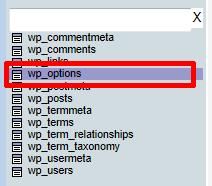 wp_options